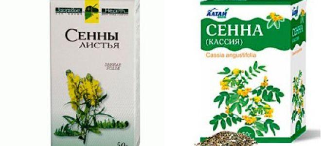 Трава сенны для очищения кишечника
