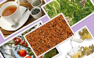 Как выбрать чай от геморроя?
