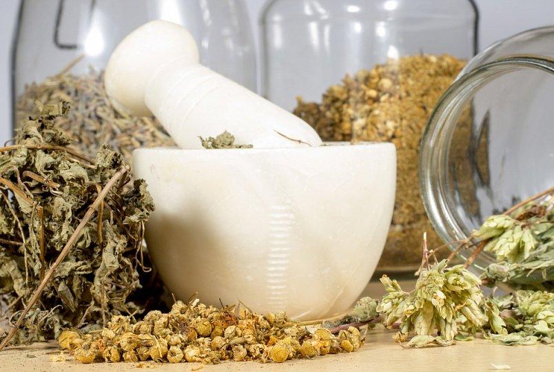 травы для лечения заболеваний
