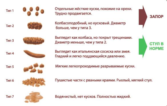 Список продуктов и виды кала